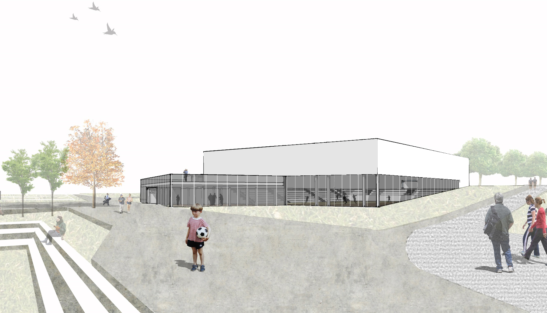 proyecto-municipal-arquitectura-arquitecto-ourense